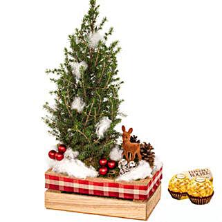 Arrangement Winterwonderland with 2 Ferrero Rocher