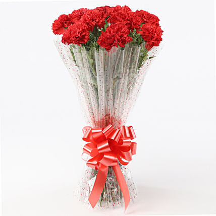 10 Elegant Red Carnations Bouquet: Send Carnations