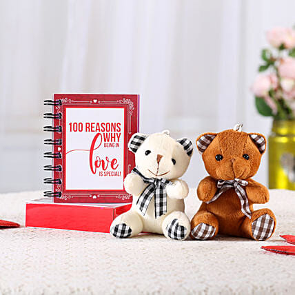 100 Reasons Love Book & Teddy Combo: Gifts for Teddy Day