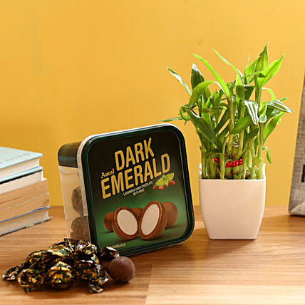 2 Layer Bamboo & Amul Emerald Chocolate: Gifts for Hug Day