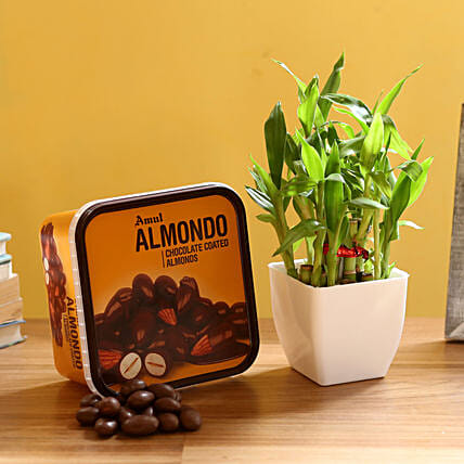 2 Layer Bamboo & Amul Wafers: Feng Shui Gifts
