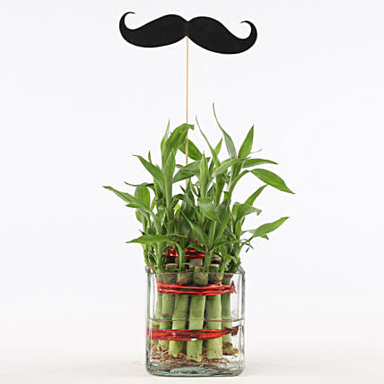 2 Layer Bamboo Plant With Mustache: Grand Parents Day Gifts