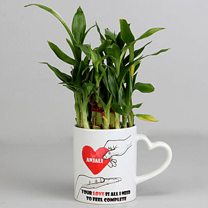 2 Layer Lucky Bamboo Plant in Heart Ceramic Mug: Personalised Pot plants