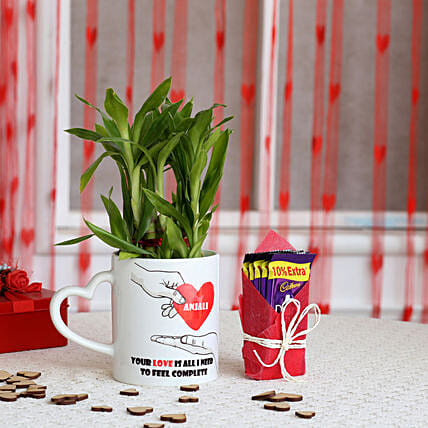2 Layer Lucky Bamboo Plant with Cadbury Dairy Milk: Valentines Day Chocolates