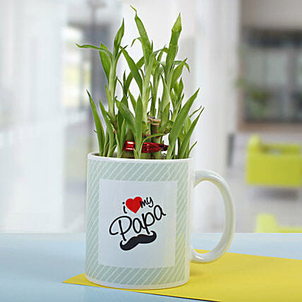 Bamboo In A Mug: Exotic Plants