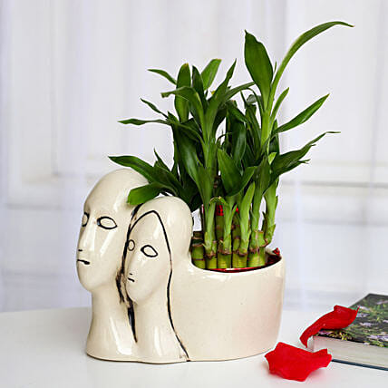 Lucky Bamboo Plant in Couple Pot: Valentines Day Lucky Bamboo