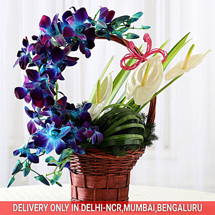 Basket of Purple Orchids & Anthuriums: Gifts for Anniversary