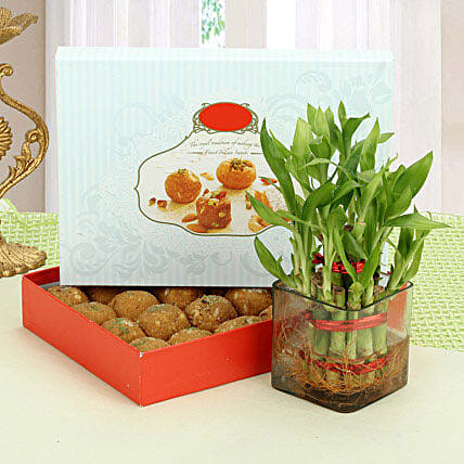 Besan Laddoo with Luck: Send Lucky Bamboo for Rakhi