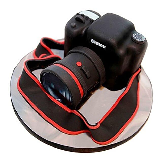 Camera Cake Send Designer Cakes