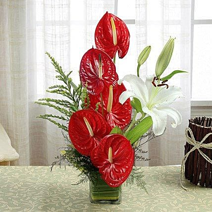 Dare To Love: Anthuriums