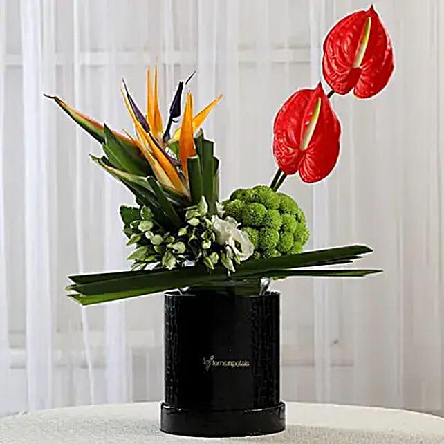 Exotic Box of Anthuriums & Bird of Paradise: