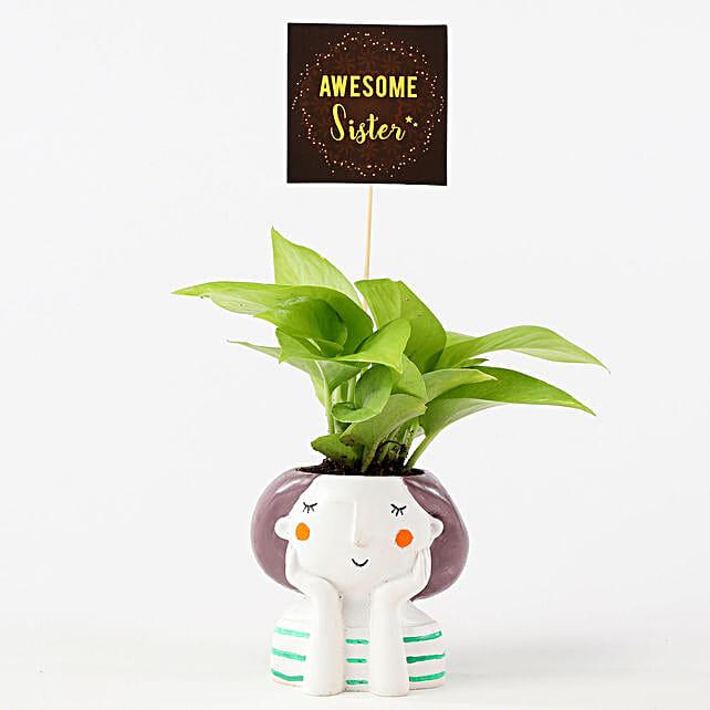 Golden Money Plant In Resin Pot For Sister: