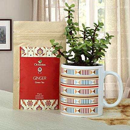 Green Plant With Tea: Plant Combos