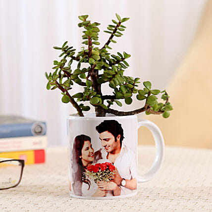 Jade Plant In Personalised Mug-White: Personalised Pot plants