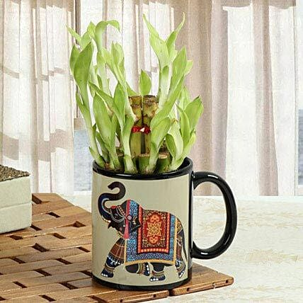 Luck In Mug: Send Spiritual Gifts