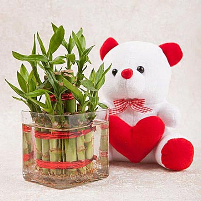 Luck N Cuteness Combo: Send Lucky Bamboo for Rakhi