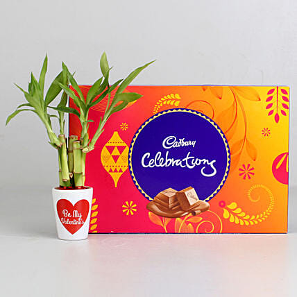 Lucky Bamboo Plant in Valentines Pot & Cadbury Celebrations: Chocolate Combo For Valentine's Day
