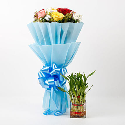 Mixed Roses & Two Layer Lucky Bamboo Combo: Bamboo Plants
