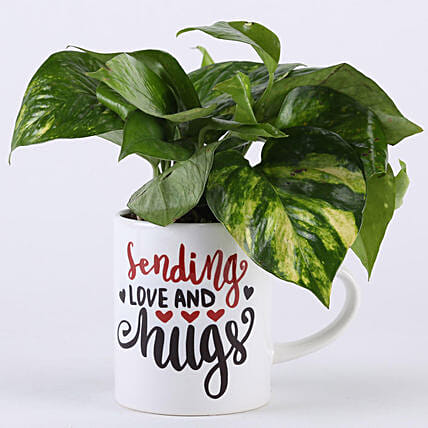 Money Plant In Love & Hugs Mug: Money Tree