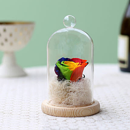 Mystic- Forever Rainbow Rose In Glass Dome: