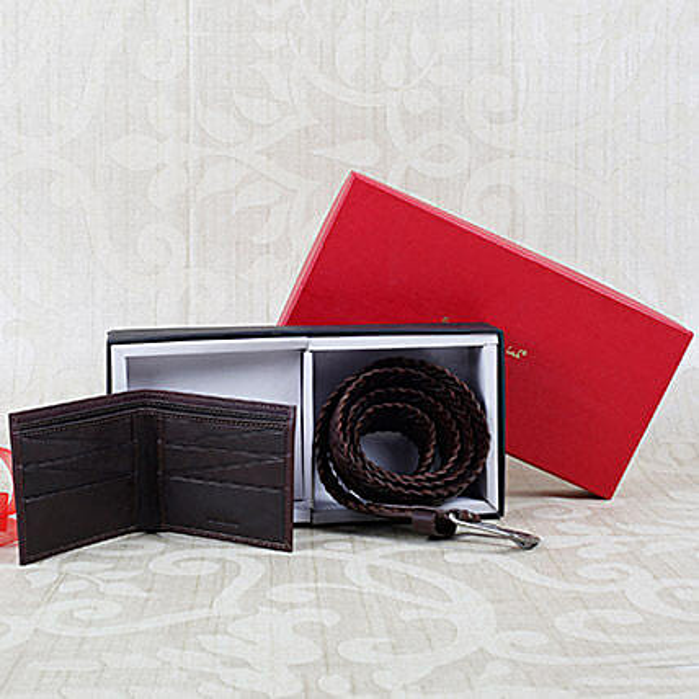 Paradigm Dark Brown Wallet N Belt Combo: Accessories