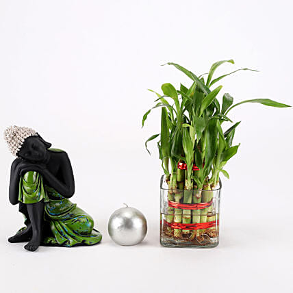 Relaxing Buddha & Bamboo Plant Combo: Plant Combos