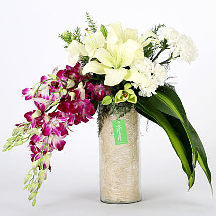 Orchids & Carnations Vase Arrangement: Premium Flowers