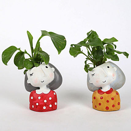 Set of 2 Lively Plants In Raisin pots: