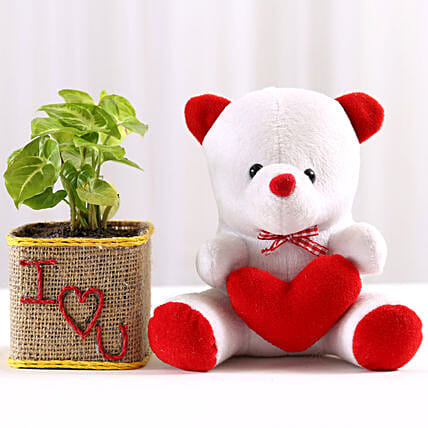 Syngonium Plant in I Love You Vase & Teddy Bear: Plants N Teddy Bears