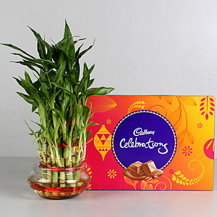 Three Layer Lucky Bamboo with Cadbury Dairy Celebrations: