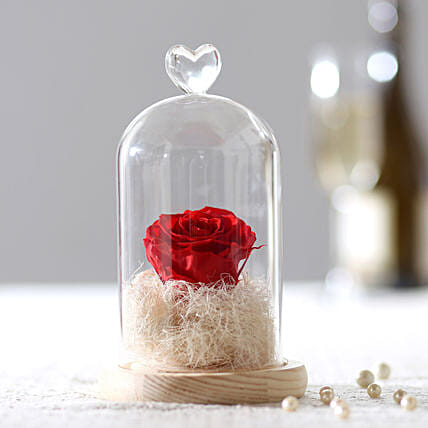 Timeless- Forever Red Rose In Glass Dome: Roses