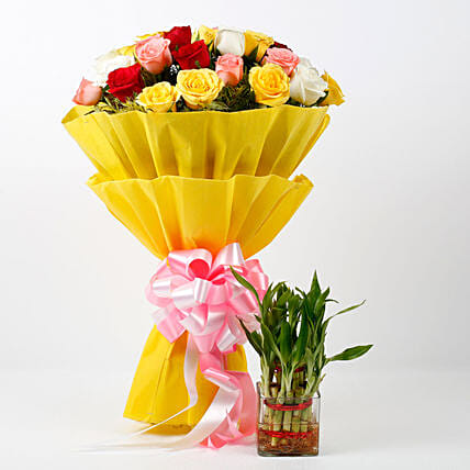 Two Layer Lucky Bamboo Plant With Mixed Roses Bouquet: