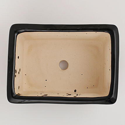 Ceramic Rectangular Bonsai Tray Black: Pots and Planters