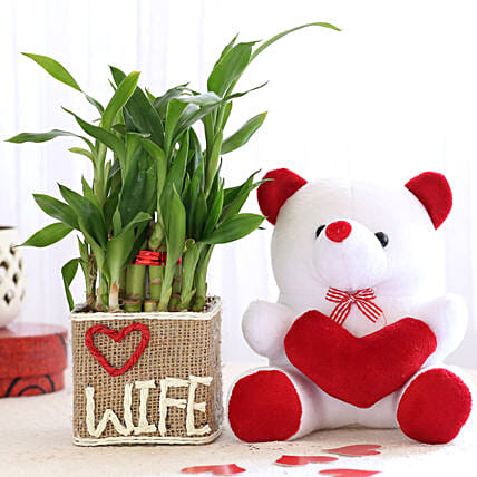 2 Layer Lucky Bamboo For Wife With Teddy Bear: Plants N Teddy Bears