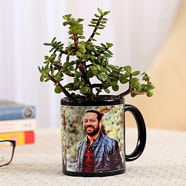 Jade Plant In Stylish Personalised Mug: Buy Coffee Mugs