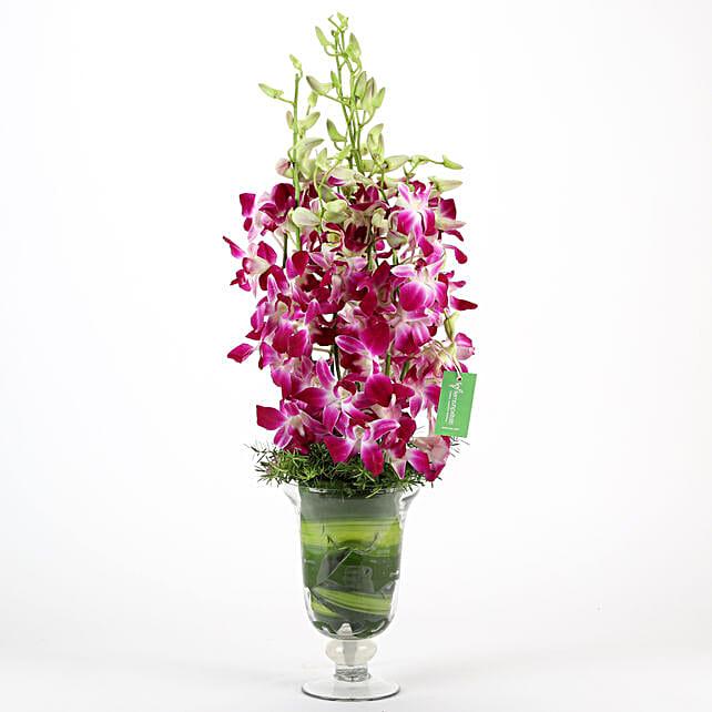 Purple Orchids Vase Arrangement: Send Orchids