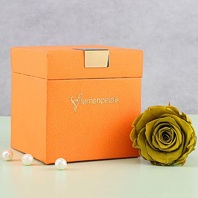 Olive Green Forever Rose in Orange Box: Hug Day Gifts