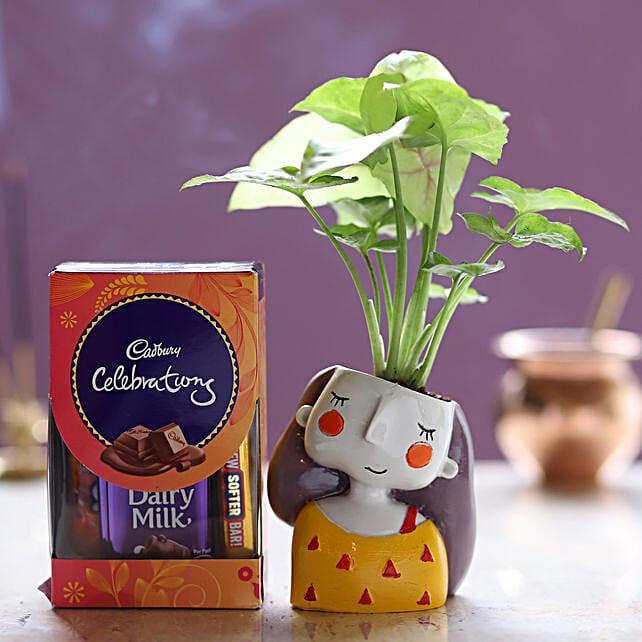 Cadbury Celebrations & Syngonium Plant: Ornamental Plants