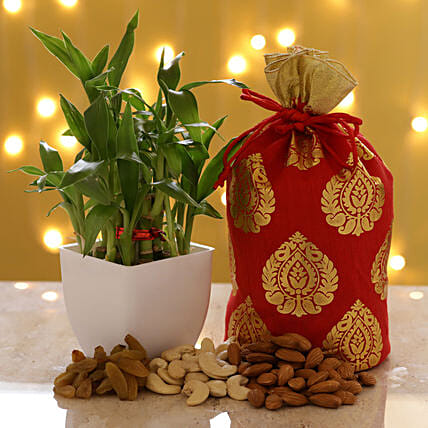 2 Layer Bamboo & Dry Fruits: Home Decor