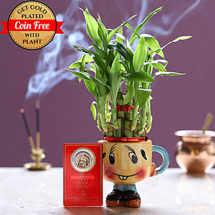 Free Gold Plated Coin With Lucky Bamboo Smiley Pot: Gift Combos