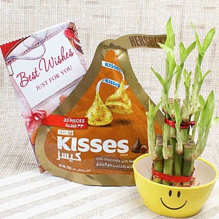 2 Layer Lucky Bamboo & Hershey's Kisses: Indoor Plants