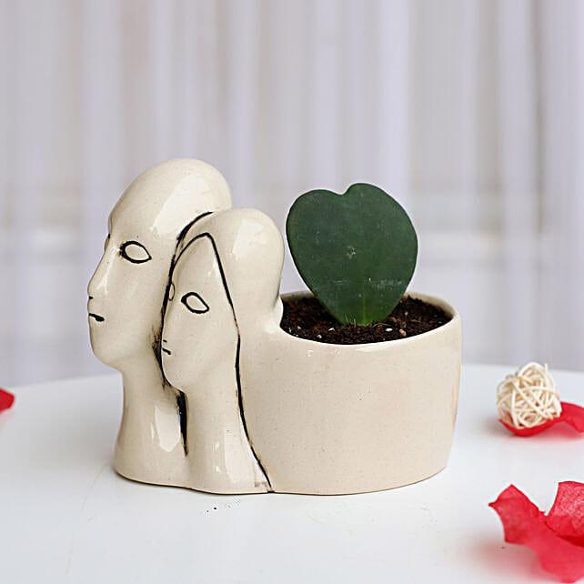 Hoya Plant in Couple Pot: Desktop Plants