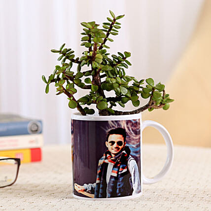 White Personalised Mug With Jade Plant: Personalised Pot plants