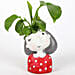 money plant in girl shaped pot