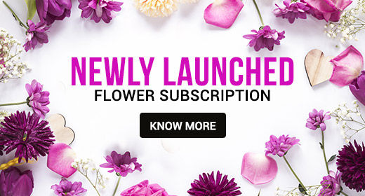 Flower subscriptions Gifts online