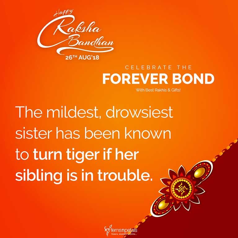 raksha bandhan quote sibling