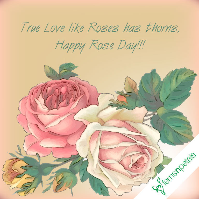 Happy Rose Day Quotes, Wishes N Greetings | Rose Day 2019 - Ferns N