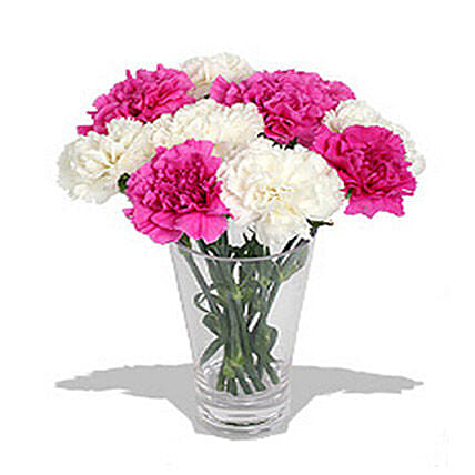 10 Pink n White Carnations in Vase