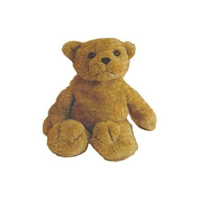 Eddy The Teddy