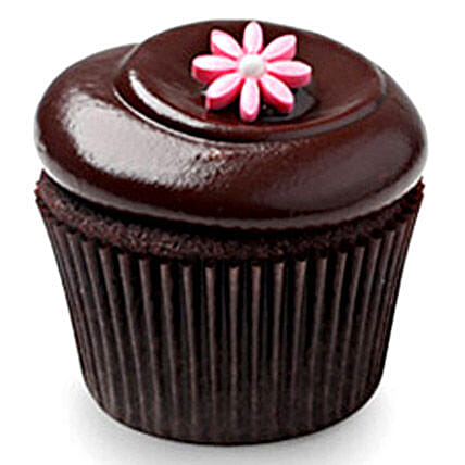 6 Chocolate Squared Cupcakes by FNP